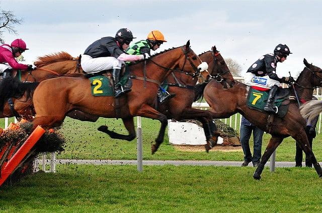 Cavalos de corrida com seus jóqueis, saltando sob a grama