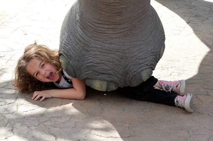Menina sendo pisada por um elefante